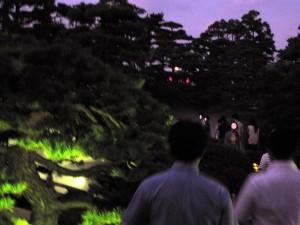 ライトアップされた公園を散策。
